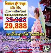โตเกียวฟูจิ 5วัน3คืนพาเที่ยวทุกวันบินจากเชียงใหม่ พีเรียด 22-26/26-30 มีนาซากุระราคา 29,888/ท่าน